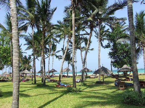 Neptune Paradise Beach Resort & Spa : hotel garden
