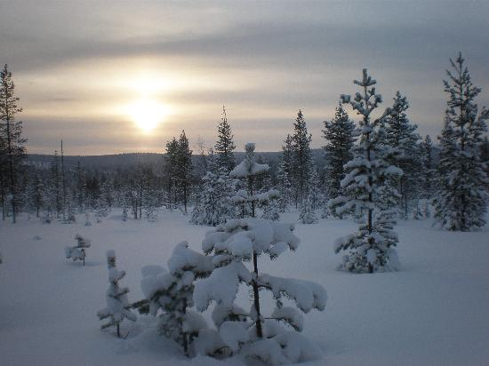 Saariselka, Finlandia: Views during snowmobile trip