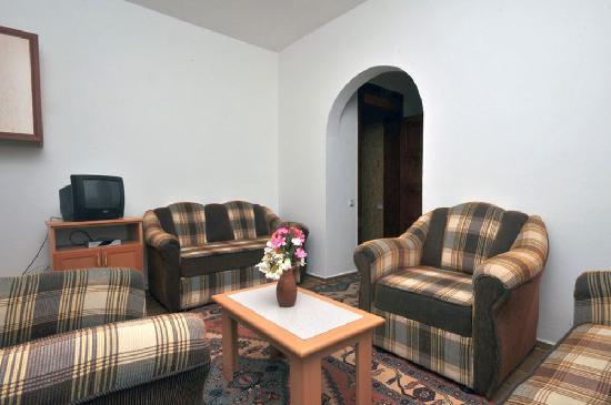 Gelemis Apart Hotel: Apartwohnzimmer