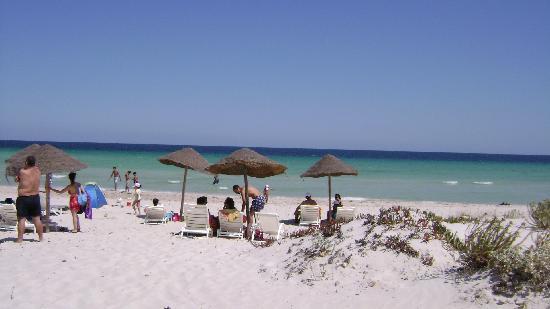 Residence Dar Sidi : the beach