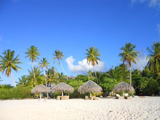 Tikehau Ninamu Resort : Arrivée au resort