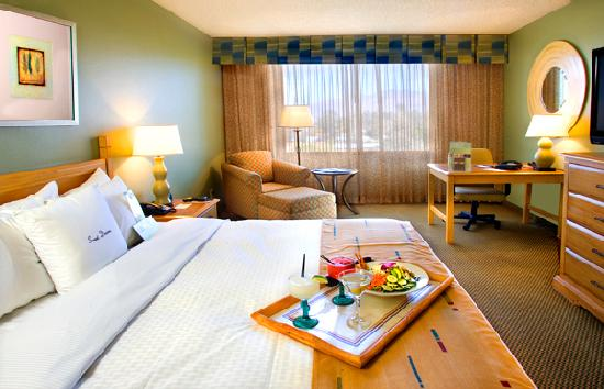 Doubletree by Hilton Tucson - Reid Park: King Bed Guestroom