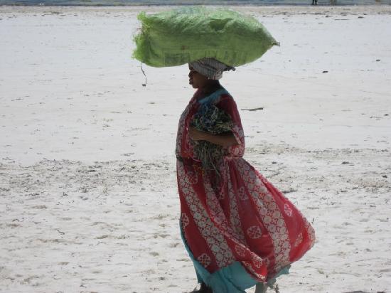 Zanzibar, Tanzania: donne al lavoro