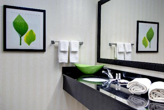 Fairfield Inn & Suites Rockford: Guest Bathroom