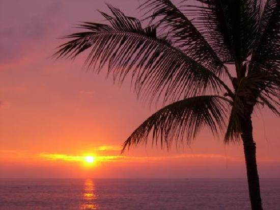 Kona Reef Resort: The sunset