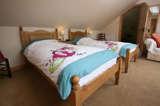 Silver Ridge Bed & Breakfast : TheTwin Pine Room