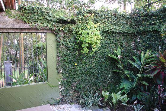 Terrazas de Golf Boutique Hotel: Garden wall