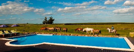 Estancia Finca Piedra: Ecotourism & Vineyards