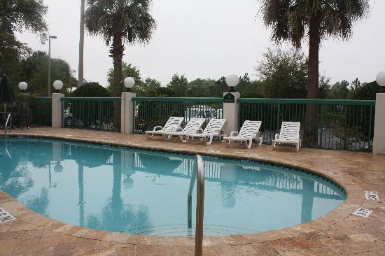 Wingate by Wyndham Tampa / USF: Pool