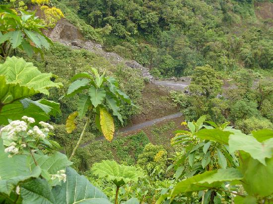Costa Rica Motorcycle Tours: Shot of the road