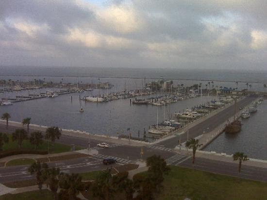 Best Western Corpus Christi: view from the hotel 10th floor