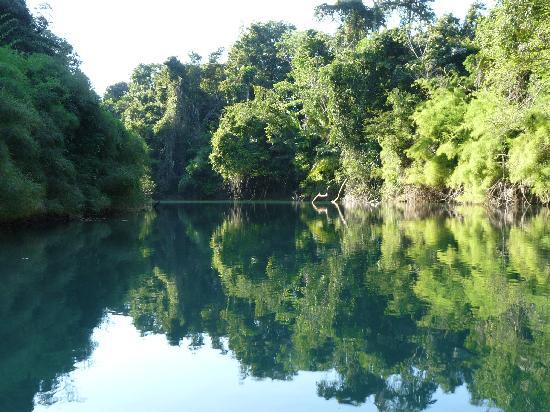 Ara Macao Las  Guacamayas: En vedette sur le rio lancantun