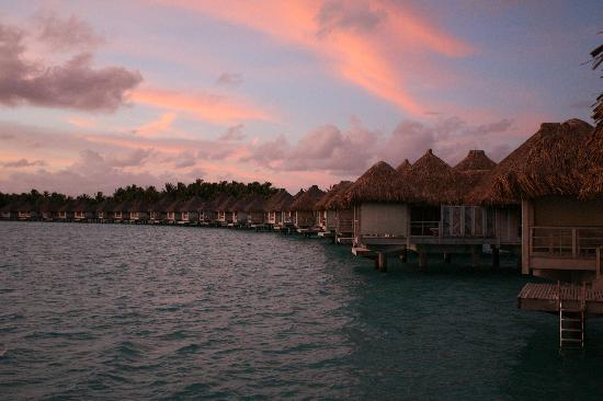 The St. Regis Bora Bora Resort: Over the water bungalows