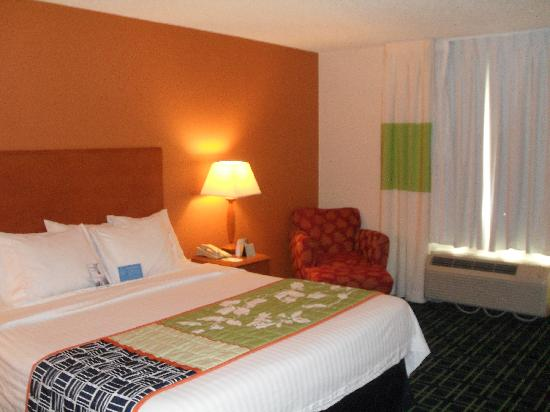 Fairfield Inn & Suites Tampa North: Room