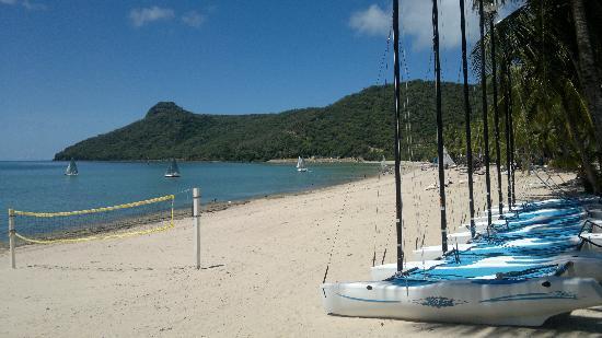 Hamilton Island, Australia: Catseye beach