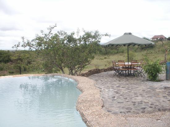 Amani Mara Lodge : Amani Swimming pool