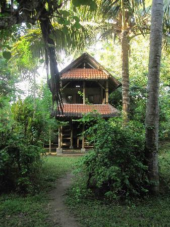 Friends of the National Parks Foundation Volunteer & Conservation Center in Bali: My dream house