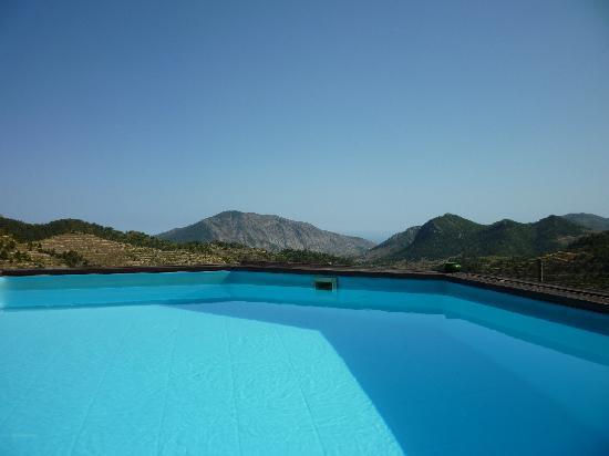 B&B Villa Pico: poolview
