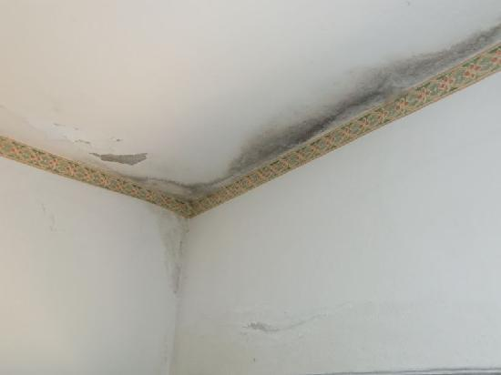 Casa Plazzi : soffitto della stanza