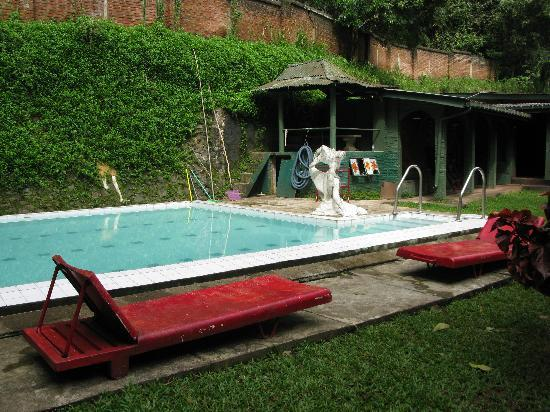 Helga's Folly : piscine