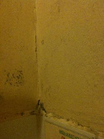 Green Guesthouse : salle de douche