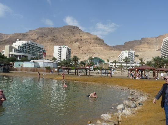 Inbar Hotel : A une vingtaine de km de l'hôtel la Mer Morte
