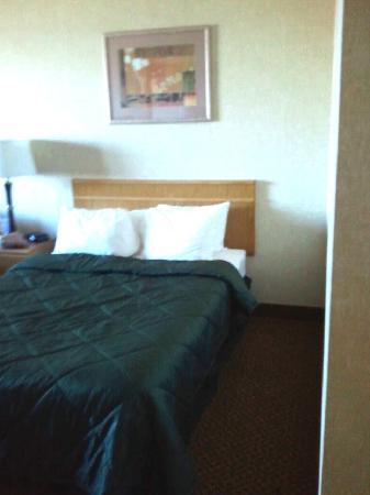 Travelodge Absecon Atlantic City: Double Bed