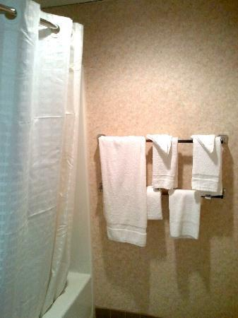 Travelodge Absecon Atlantic City: Clean Bathroom