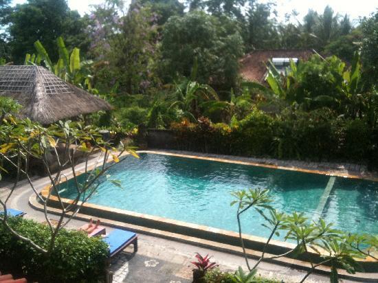 Gayatri Bungalows: the pool from balcony