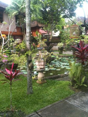 Gayatri Bungalows: garden