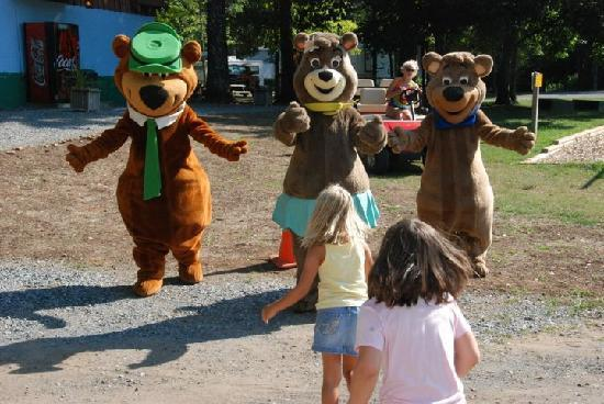 Yogi Bear's Jellystone Park at Natural Bridge: Big hugs from the Bears