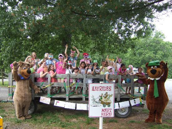 Yogi Bear's Jellystone Park at Natural Bridge: Wagon Rides with the Bears