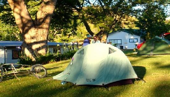 Waitomo Top 10 Holiday Park: Large grassed tent sites