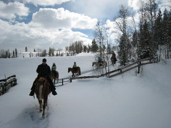 C Lazy U Ranch: trail ride