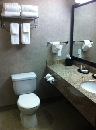 BEST WESTERN PLUS Blairmore: nice bathroom except for the hair