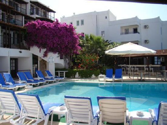 Gloria Tibi Hotel - Jarra Hotel : begonvil ve palmiyeler