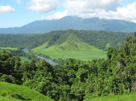 Daintree Riverview Lodges & Camp Ground: Spectacular views from an Argo 8x8 Rainforest tour