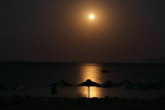 Yazoo Summer Bliss: full moon