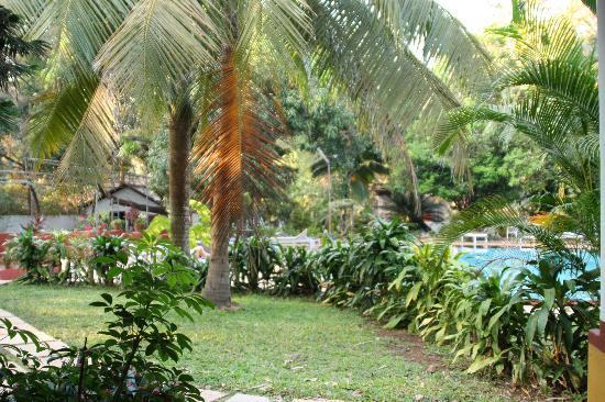Hotel Bougainvillea - Granpa's Inn: Pool & garden