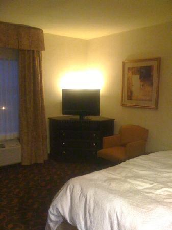 Hampton Inn & Suites Dallas-Arlington North-Entertainment District : nice ambiance