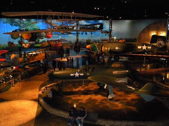 Air Zoo: Another view from the Cafe