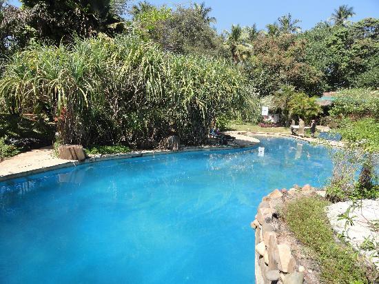 Anjuna, India: the pool