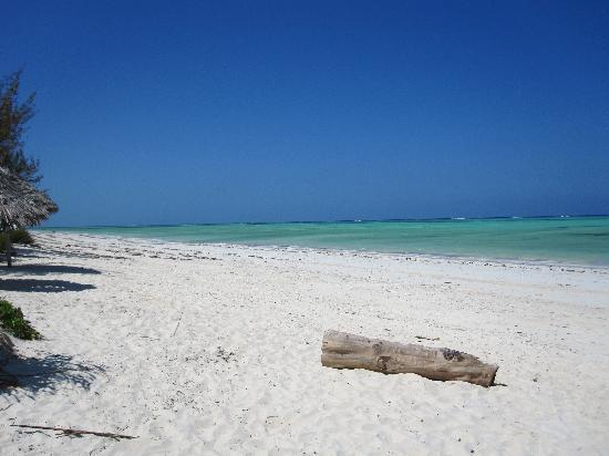 Spice Island Hotel Resort Zanzibar : Der weiße Sandstrand von Paje
