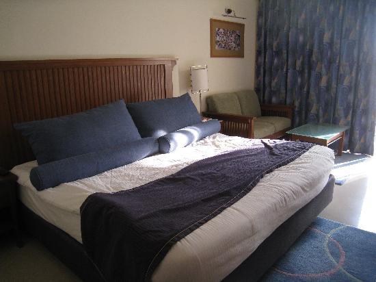 โรงแรม เดอะ เรดิสัน แจ๊ส คาจูราโฮ: notre chambre