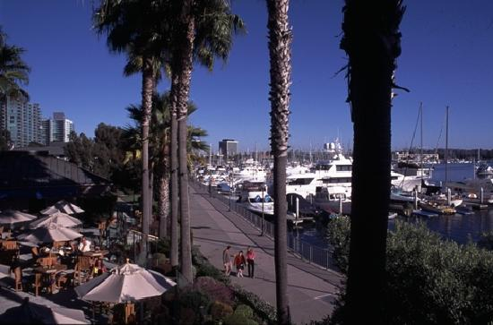 Strolling the miles long Marina Walk in Marina del Rey