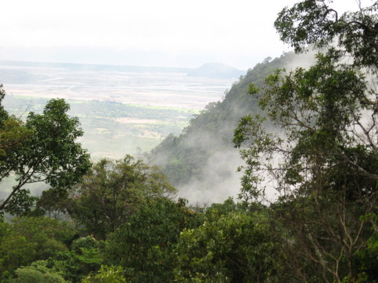 Kampot, Kambodża: The jungle, looking out to the South