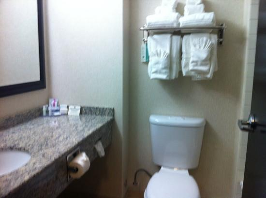 Best Western Plus The Inn at St. Albert : very bright bathroom