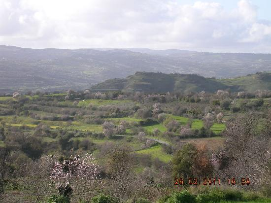 Paphos District, ไซปรัส: Typical landscape
