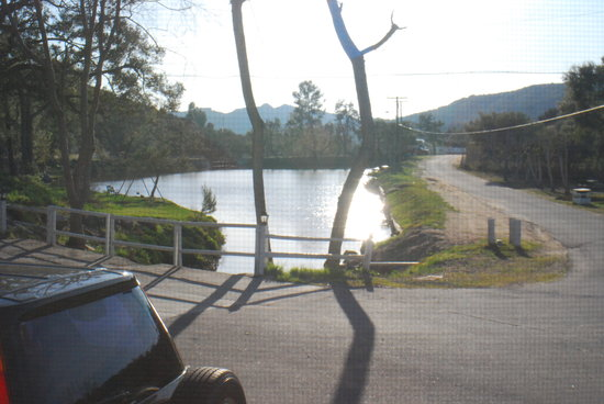 Champagne Lakes RV Resort: largest of the lakes