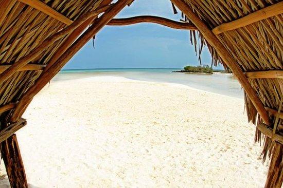Sol Cayo Coco: BEACH